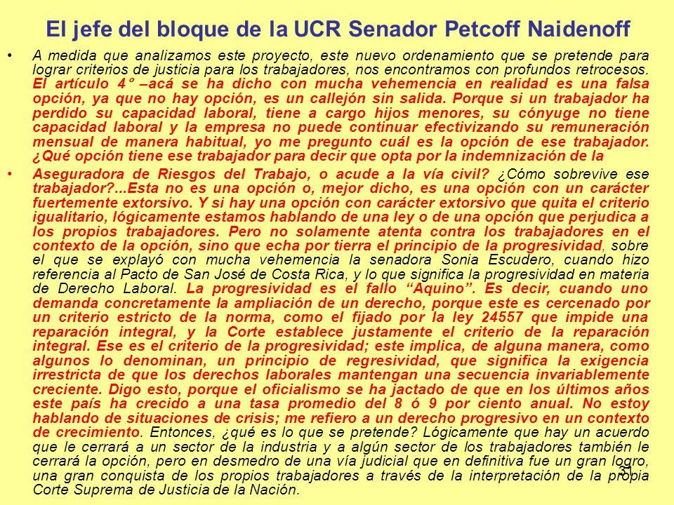 El jefe del bloque de la UCR Senador Petcoff Naidenoff