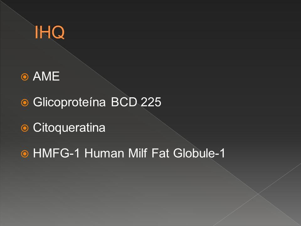 IHQ AME Glicoproteína BCD 225 Citoqueratina