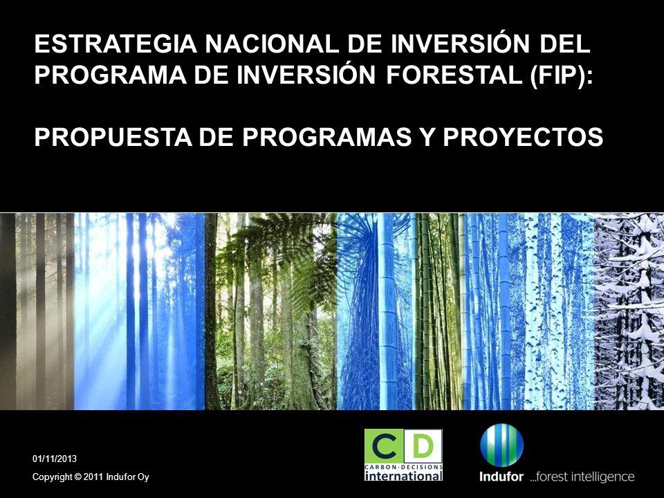 ESTRATEGIA NACIONAL DE INVERSIÓN DEL PROGRAMA DE INVERSIÓN FORESTAL (FIP): PROPUESTA DE PROGRAMAS Y PROYECTOS