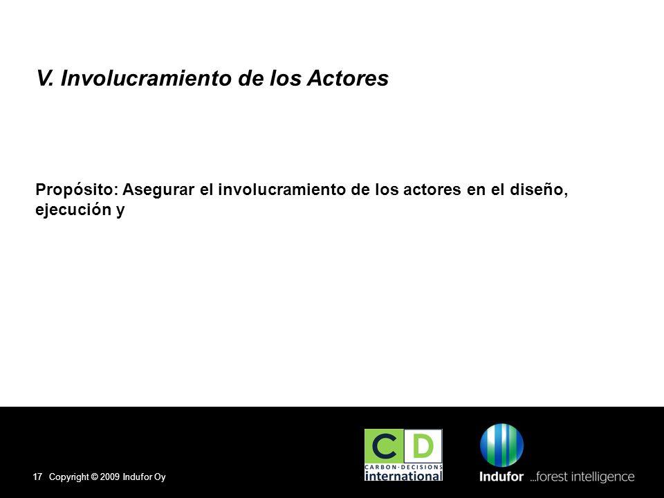 V. Involucramiento de los Actores