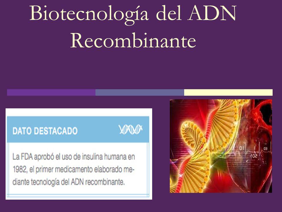 Biotecnología del ADN Recombinante