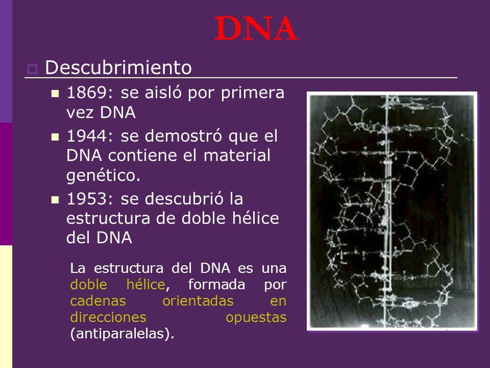 DNA Descubrimiento 1869: se aisló por primera vez DNA