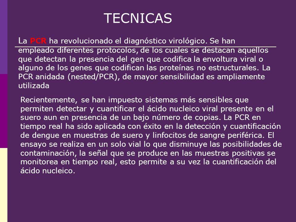 Recientemente, se han impuesto sistemas más sensibles que permiten detectar y cuantificar el ácido nucleico viral presente en el suero aun en presencia de un bajo número de copias. La PCR en tiempo real ha sido aplicada con éxito en la detección y cuantificación de dengue en muestras de suero y linfocitos de sangre periférica. El ensayo se realiza en un solo vial lo que disminuye las posibilidades de contaminación, la señal que se produce en las muestras positivas se monitorea en tiempo real, esto permite a su vez la cuantificación del ácido nucleico.