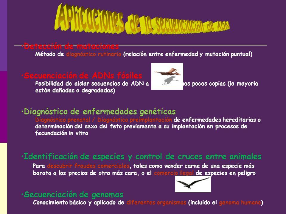Aplicaciones de la secuenciación de ADN