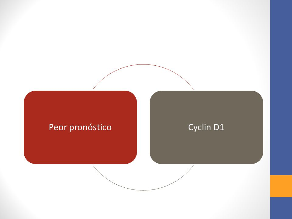 Peor pronóstico Cyclin D1
