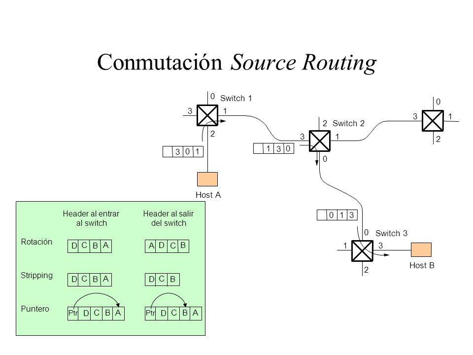 Conmutación Source Routing