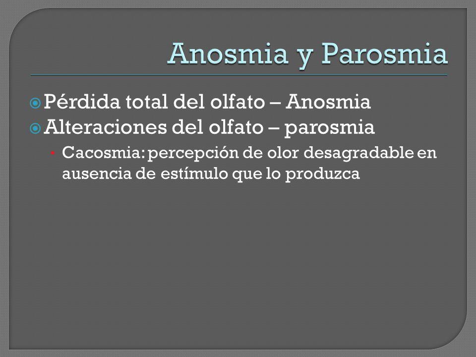 Anosmia y Parosmia Pérdida total del olfato – Anosmia