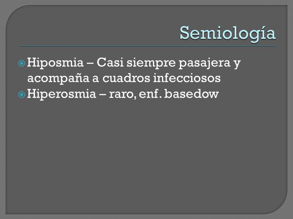 Semiología Hiposmia – Casi siempre pasajera y acompaña a cuadros infecciosos.