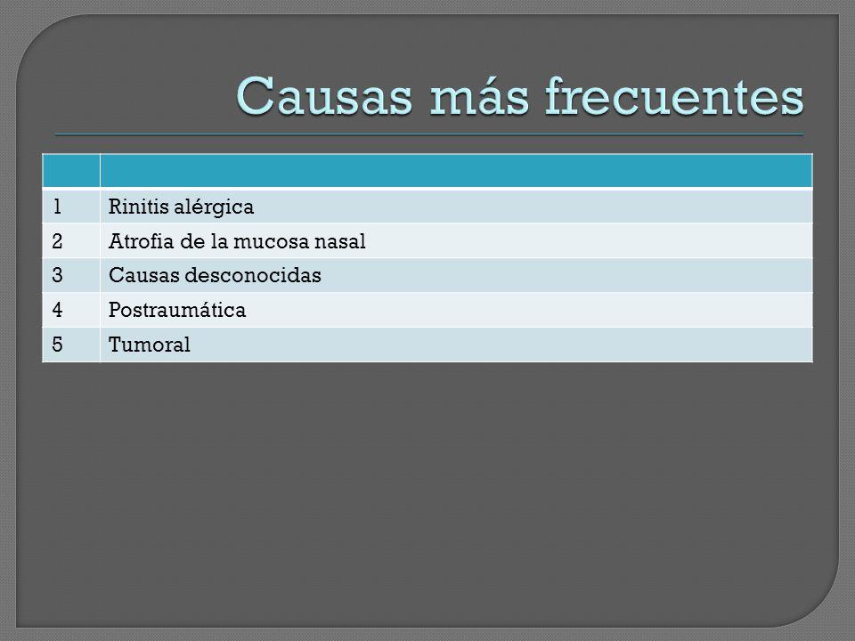 Causas más frecuentes 1 Rinitis alérgica 2 Atrofia de la mucosa nasal