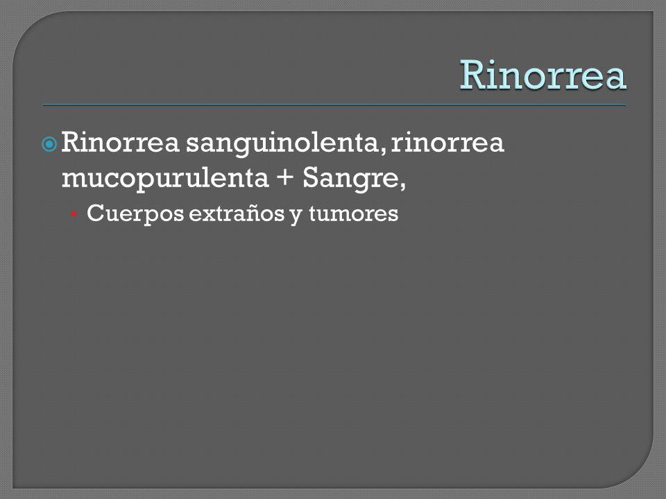 Rinorrea Rinorrea sanguinolenta, rinorrea mucopurulenta + Sangre,