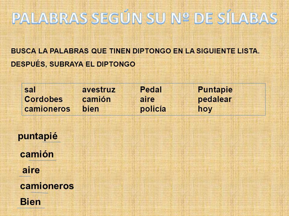 PALABRAS SEGÚN SU Nº DE SÍLABAS