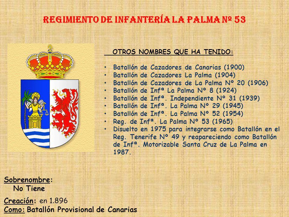 Regimiento de Infantería la palma nº 53