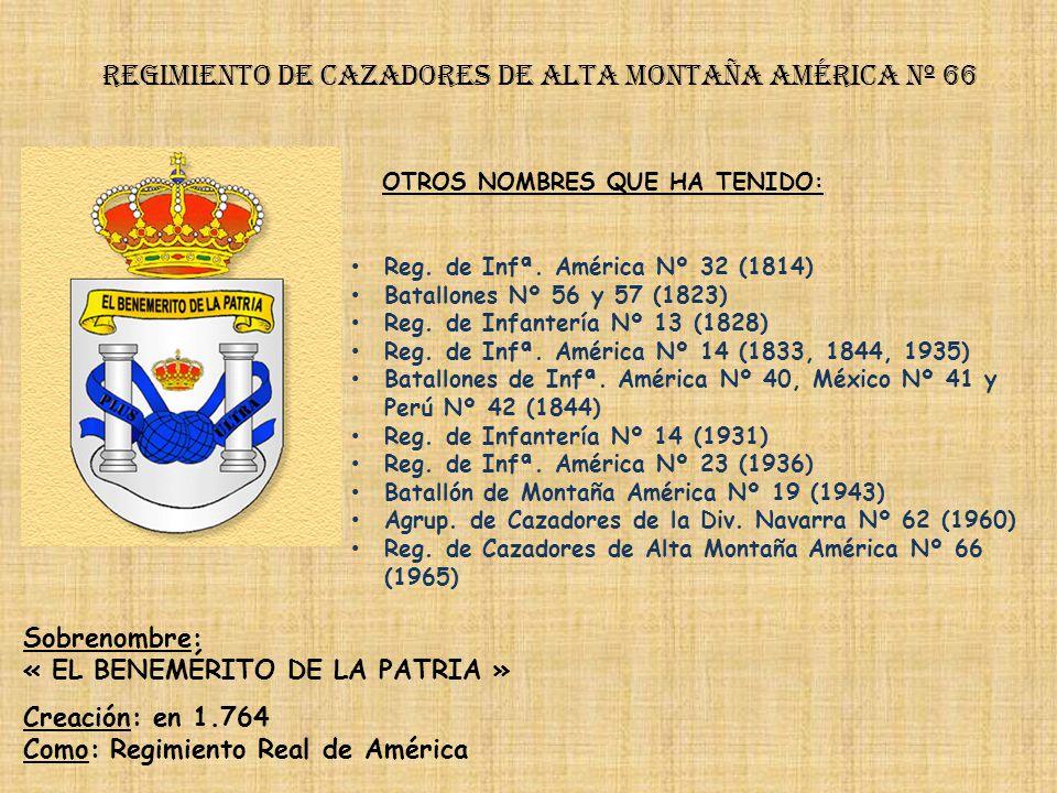 Regimiento de cazadores de alta montaña américa nº 66