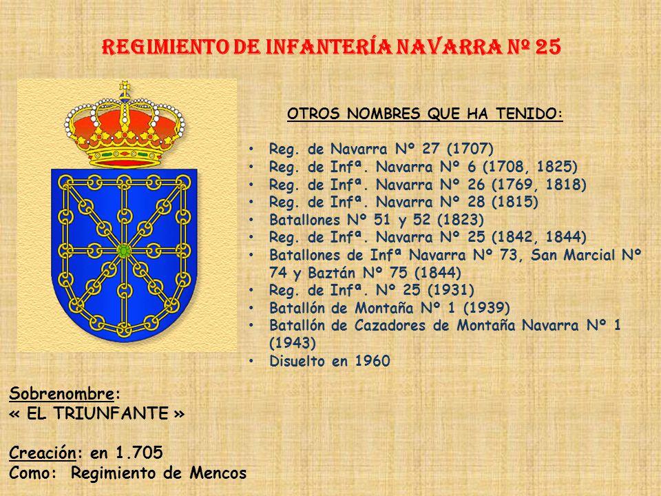 Regimiento de Infantería NAVARRA nº 25