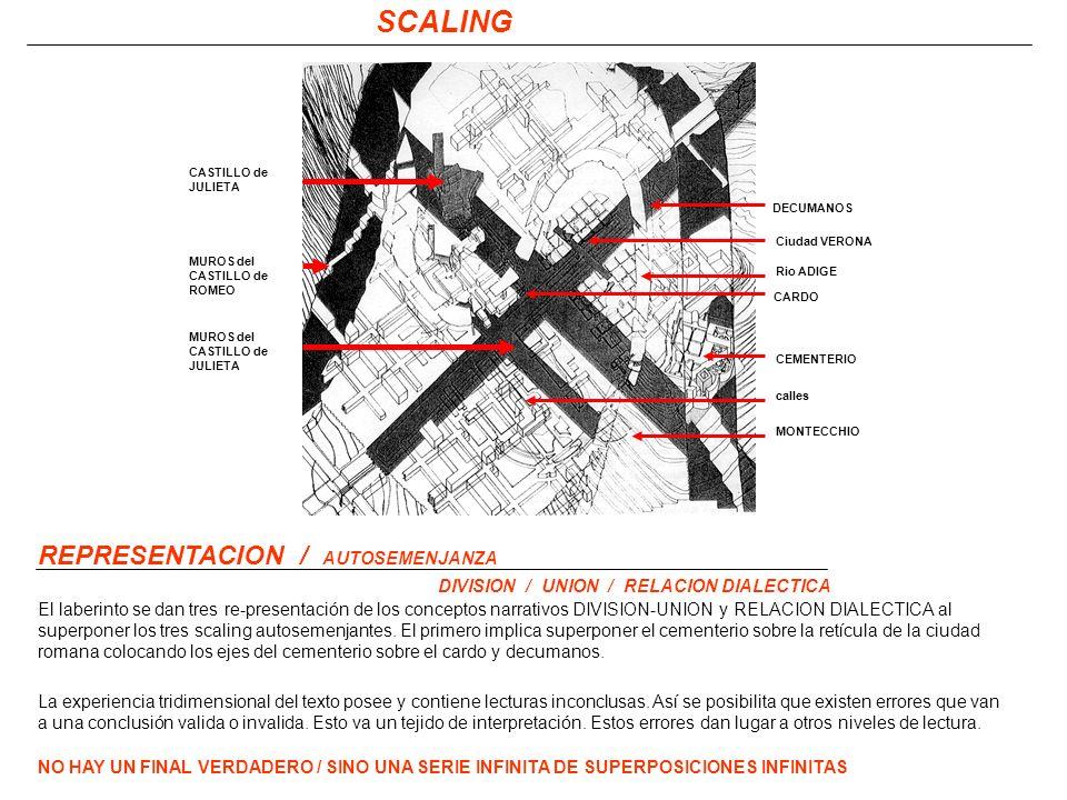 SCALING REPRESENTACION / AUTOSEMENJANZA