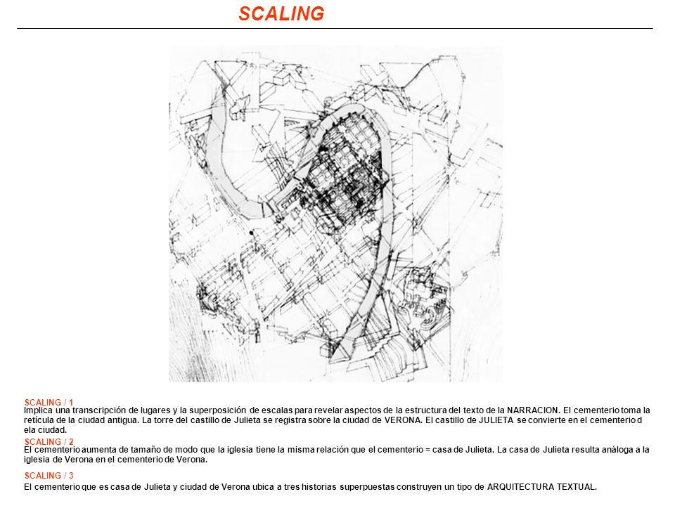 SCALING SCALING / 1.