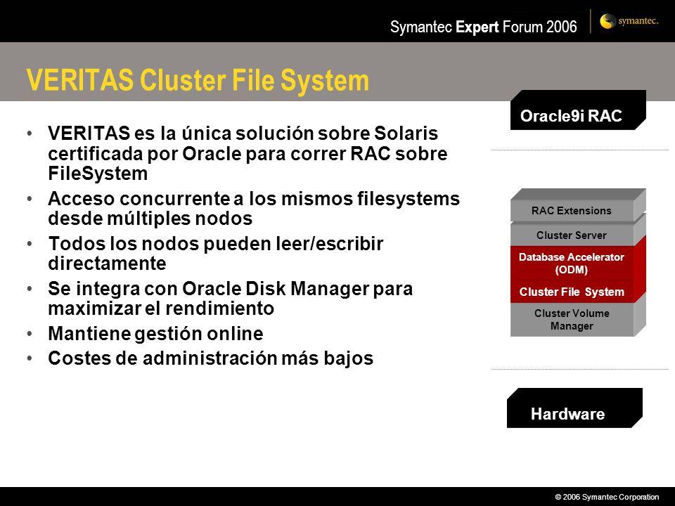 VERITAS Cluster File System