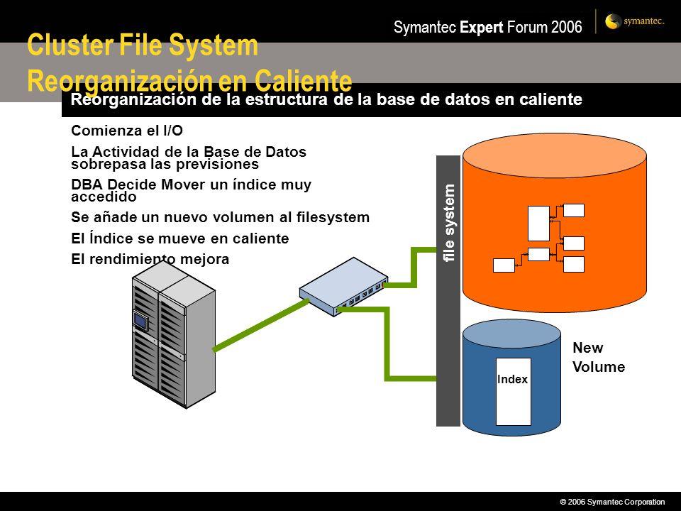 Cluster File System Reorganización en Caliente
