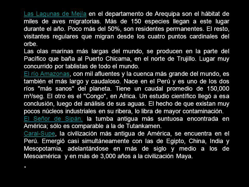 Las Lagunas de Mejía en el departamento de Arequipa son el hábitat de miles de aves migratorias. Más de 150 especies llegan a este lugar durante el año. Poco más del 50%, son residentes permanentes. El resto, visitantes regulares que migran desde los cuatro puntos cardinales del orbe.