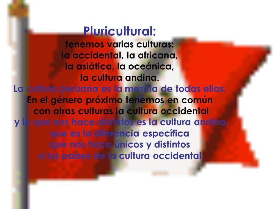 Pluricultural: tenemos varias culturas: la occidental, la africana,