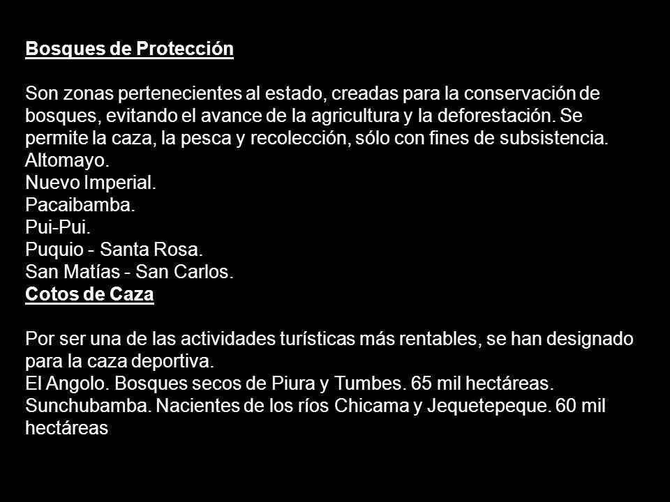Bosques de Protección