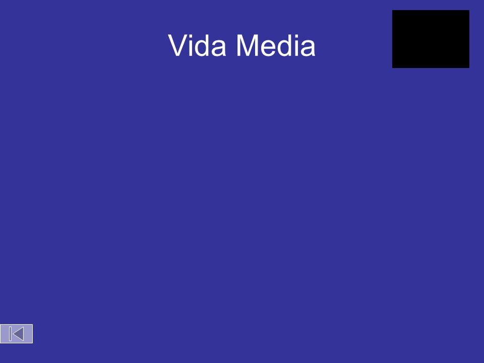 Vida Media