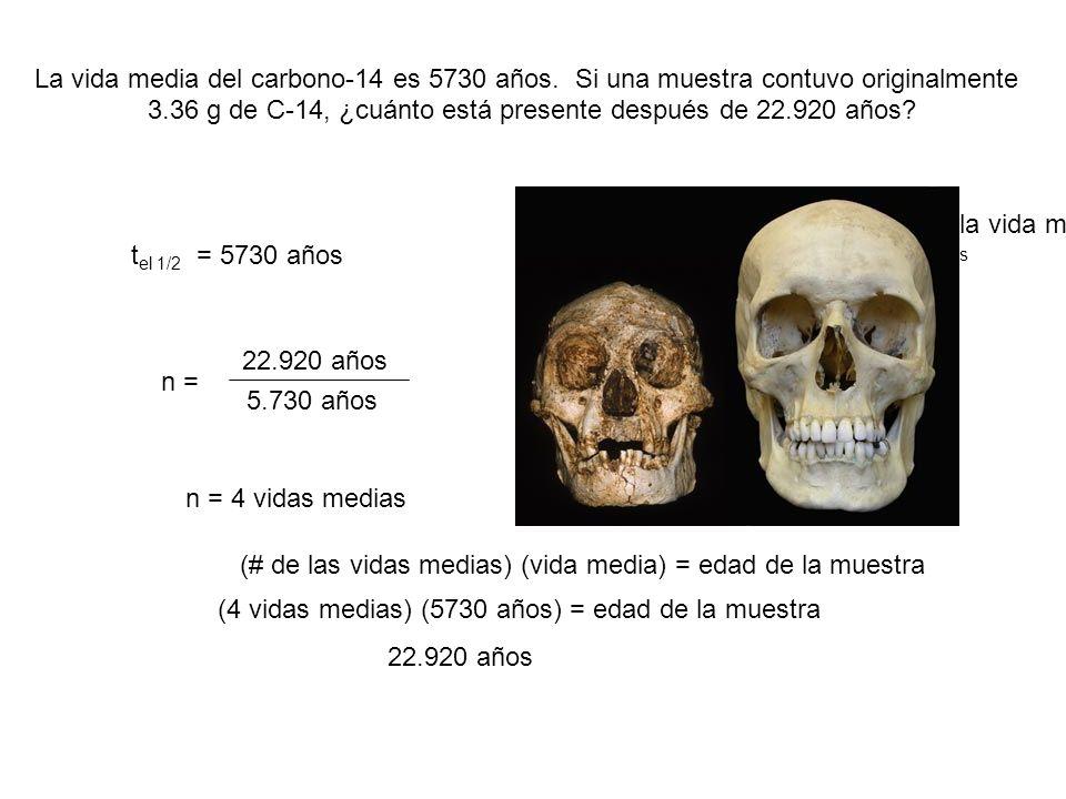 3.36 g de C-14, ¿cuánto está presente después de 22.920 años