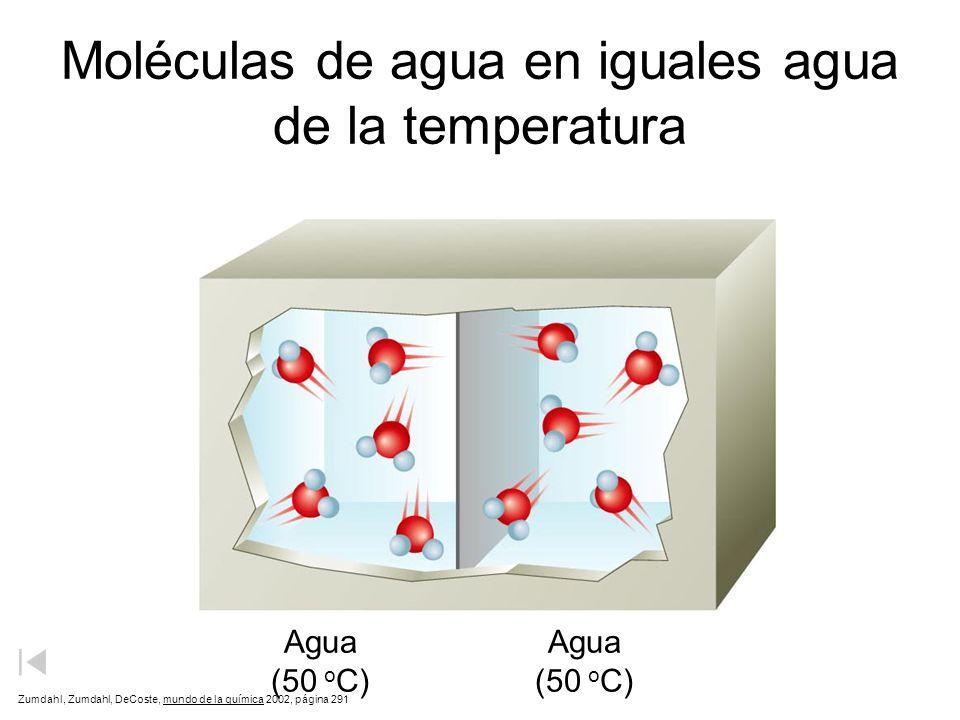 Moléculas de agua en iguales agua de la temperatura