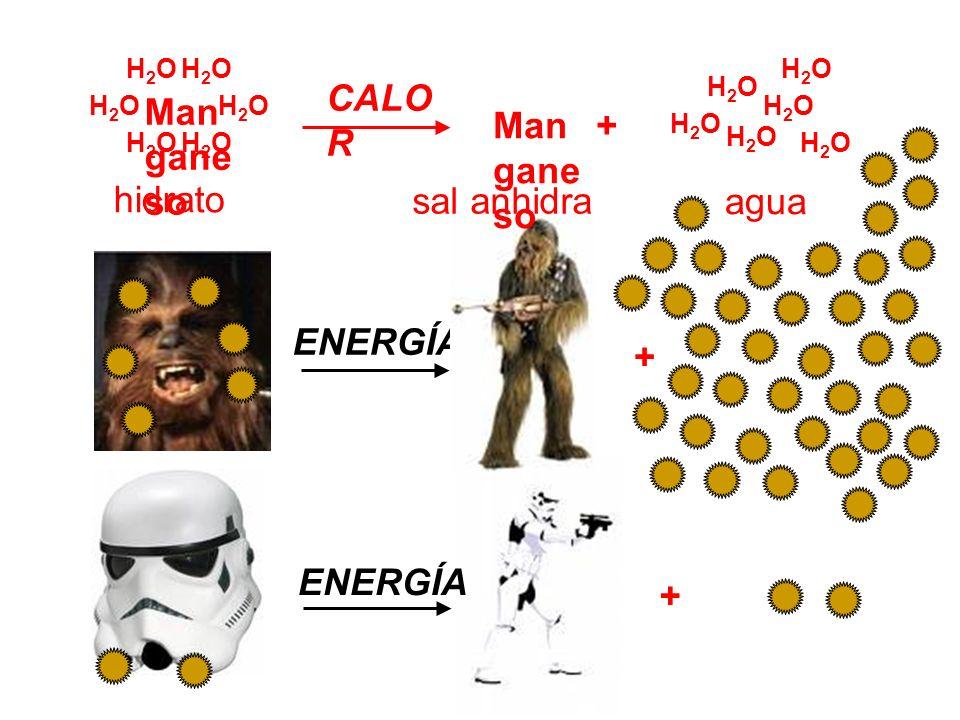 Manganeso H2O CALOR + hidrato sal anhidra agua ENERGÍA + ENERGÍA +