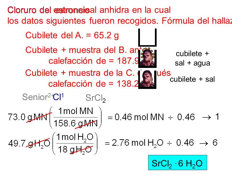 Cubilete + muestra del B. antes