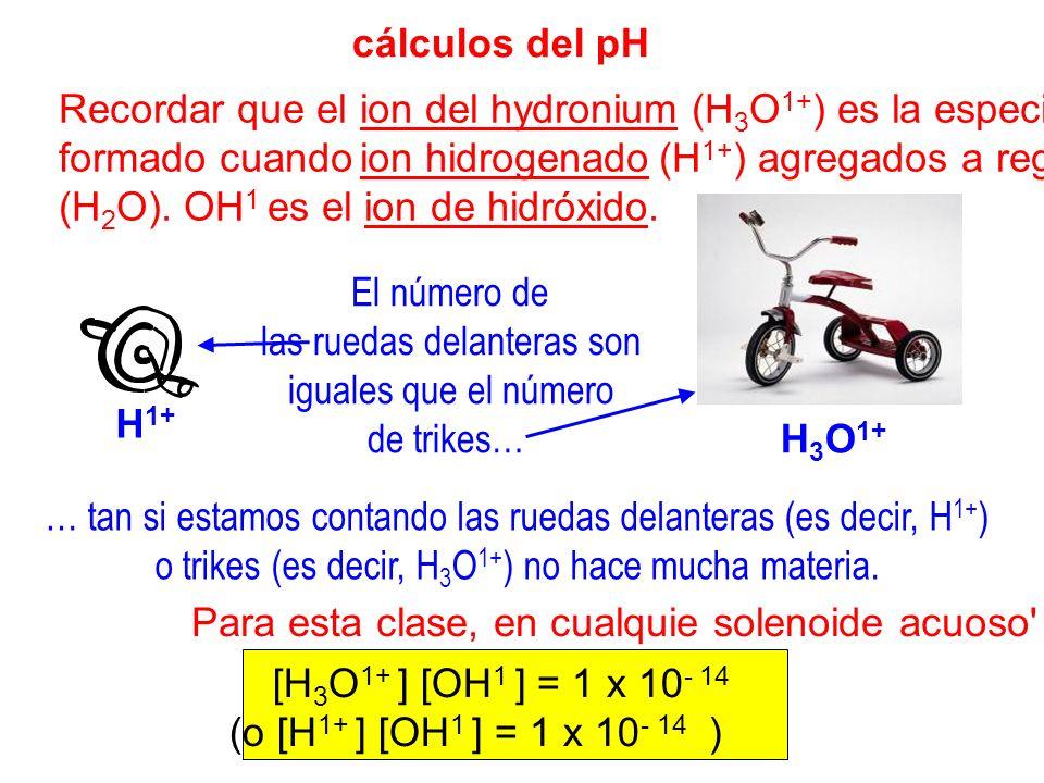 Recordar que el ion del hydronium (H3O1+) es la especie