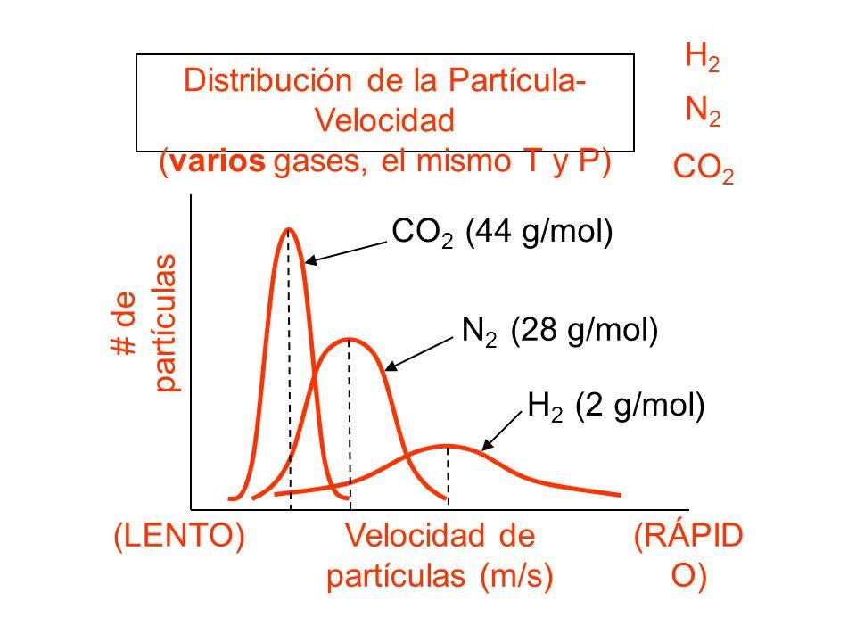 Distribución de la Partícula-Velocidad (varios gases, el mismo T y P)
