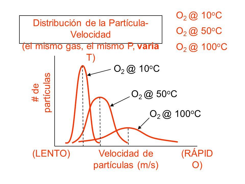 Distribución de la Partícula-Velocidad