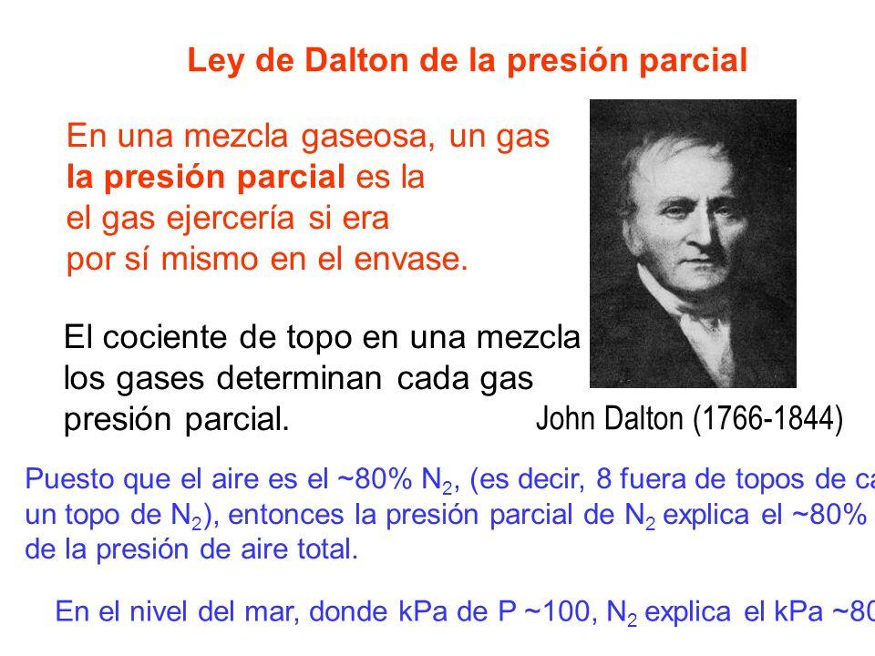Ley de Dalton de la presión parcial