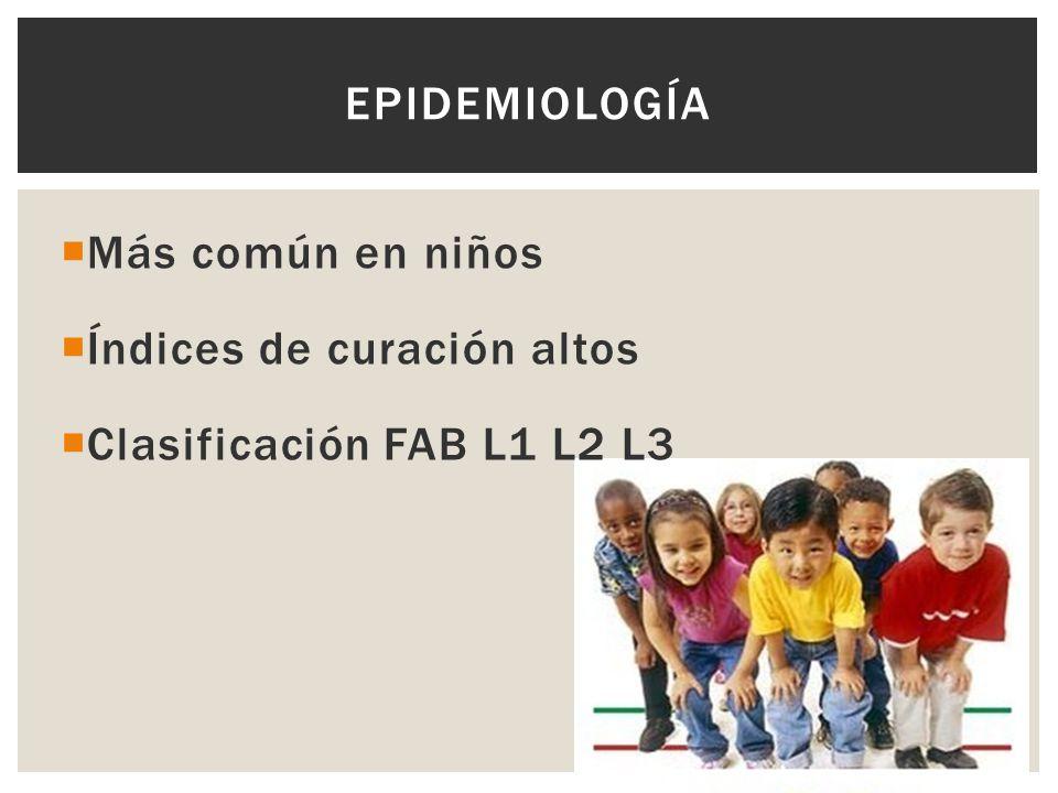 Epidemiología Más común en niños Índices de curación altos Clasificación FAB L1 L2 L3