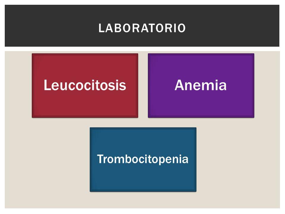 Laboratorio Leucocitosis Anemia Trombocitopenia