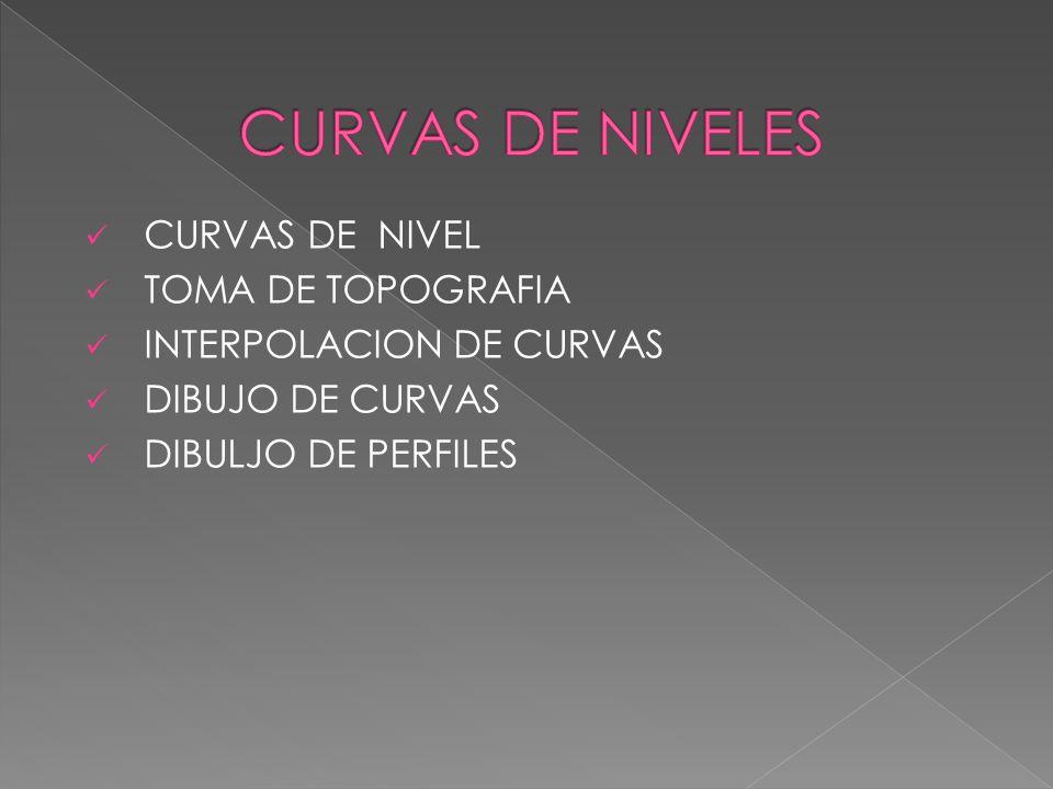 CURVAS DE NIVELES CURVAS DE NIVEL TOMA DE TOPOGRAFIA