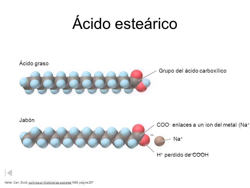Ácido esteárico Ácido graso Grupo del ácido carboxílico Jabón
