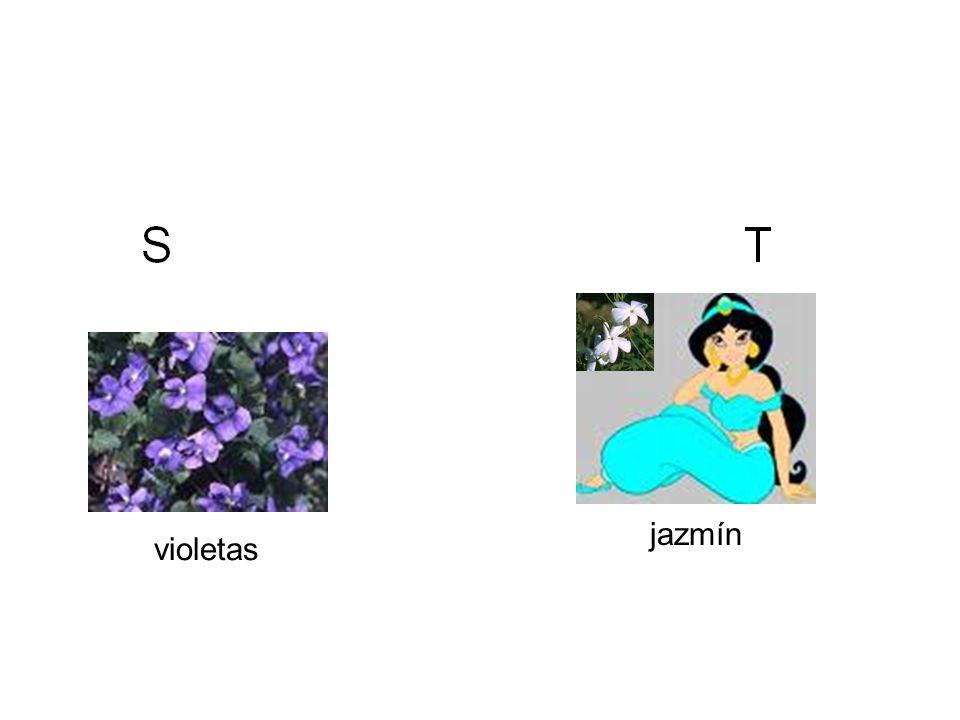 jazmín violetas