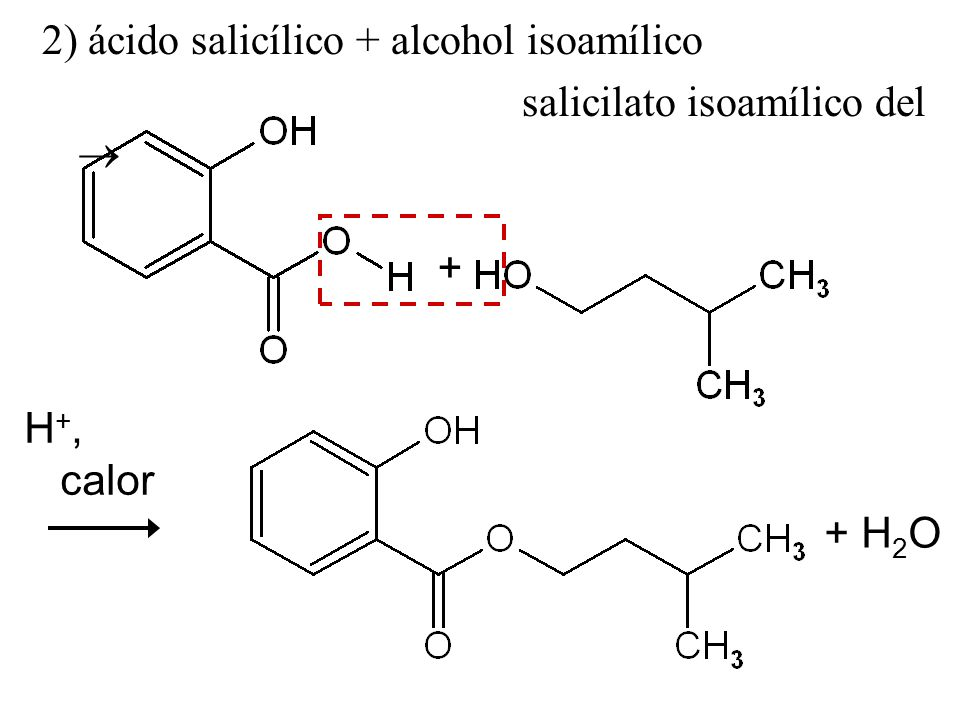 2) ácido salicílico + alcohol isoamílico