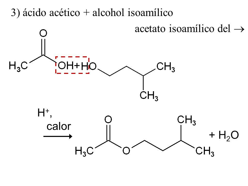 3) ácido acético + alcohol isoamílico
