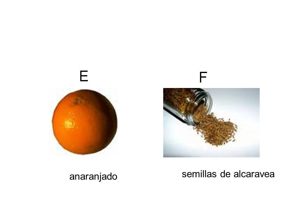 semillas de alcaravea anaranjado
