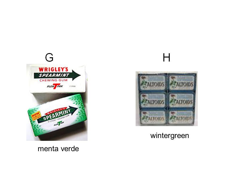 wintergreen menta verde