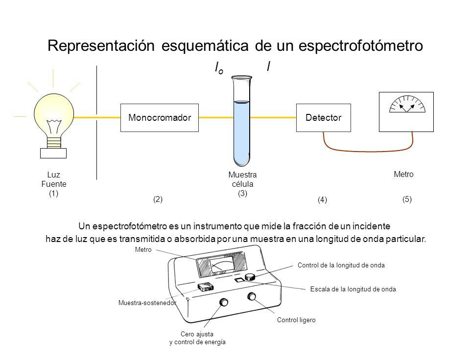 Representación esquemática de un espectrofotómetro