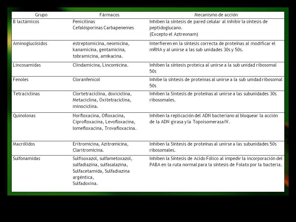 Grupo Fármacos. Mecanismo de acción. B lactámicos. Penicilinas. Cefalósporinas Carbapenemes.