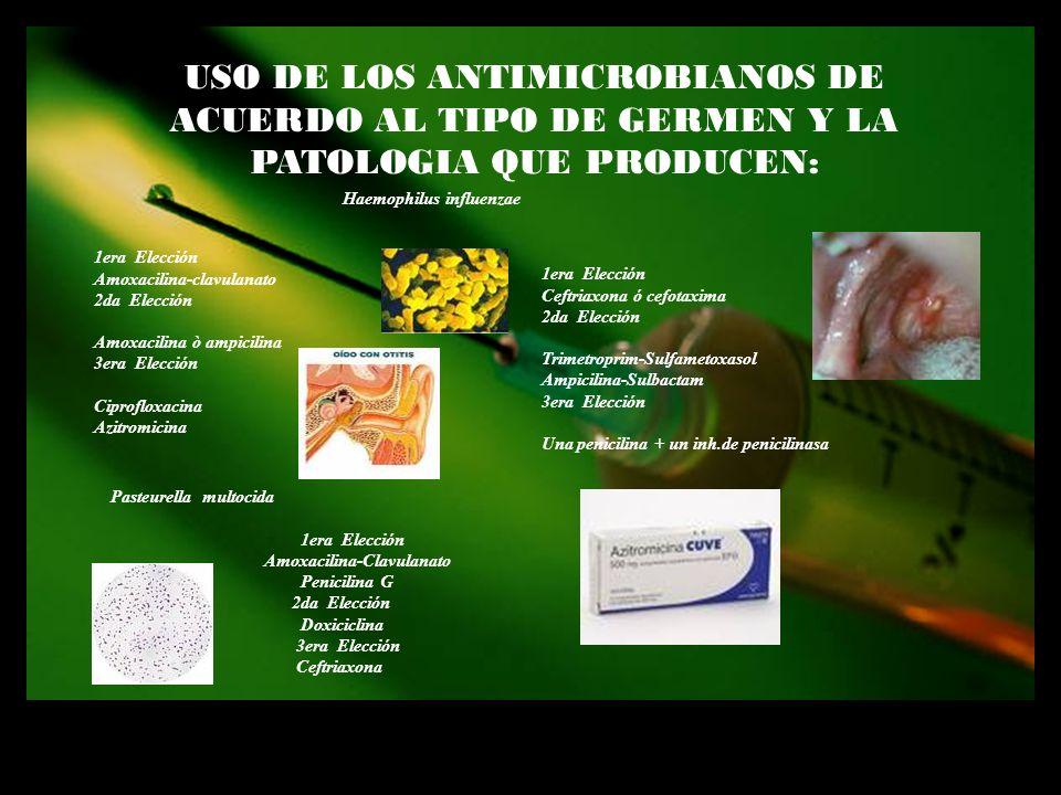 USO DE LOS ANTIMICROBIANOS DE ACUERDO AL TIPO DE GERMEN Y LA PATOLOGIA QUE PRODUCEN: