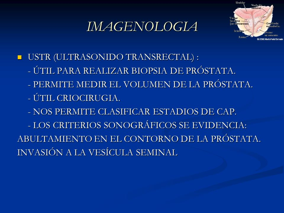 IMAGENOLOGIA USTR (ULTRASONIDO TRANSRECTAL) :