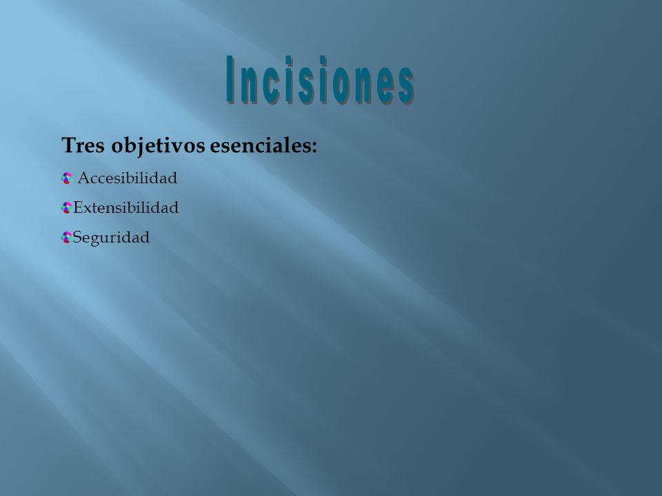 Incisiones Tres objetivos esenciales: Accesibilidad Extensibilidad