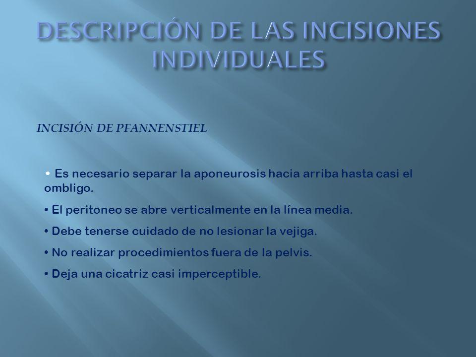 DESCRIPCIÓN DE LAS INCISIONES INDIVIDUALES