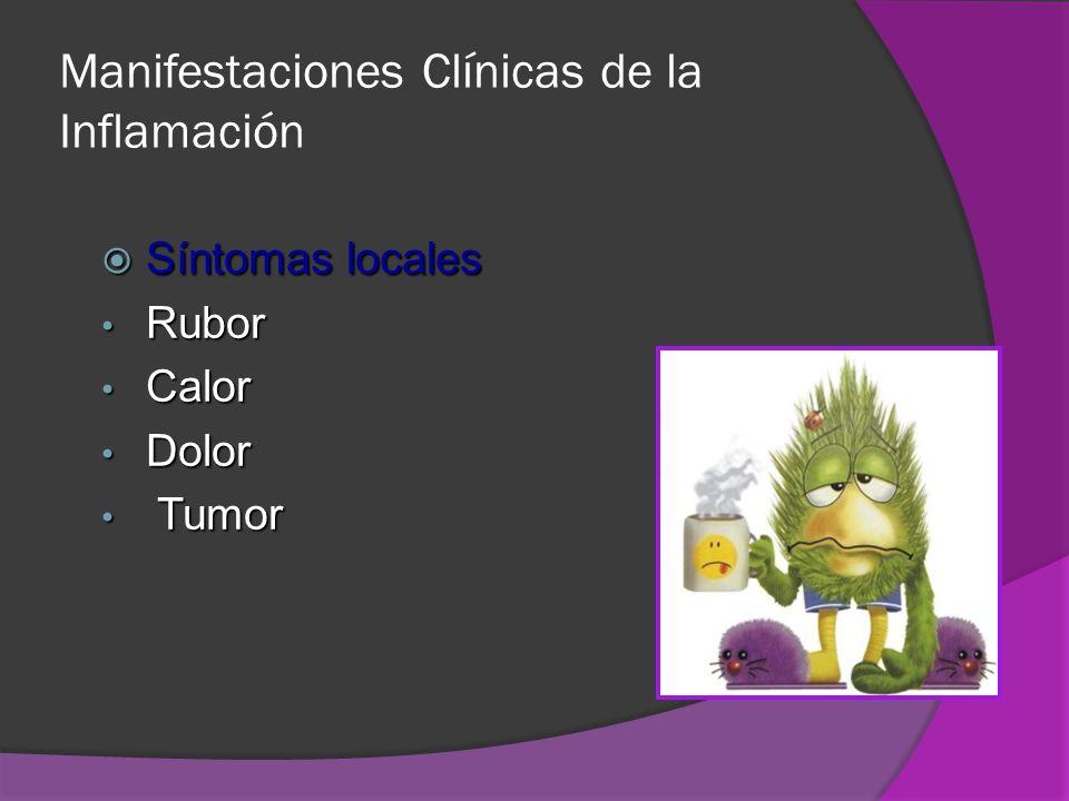 Manifestaciones Clínicas de la Inflamación